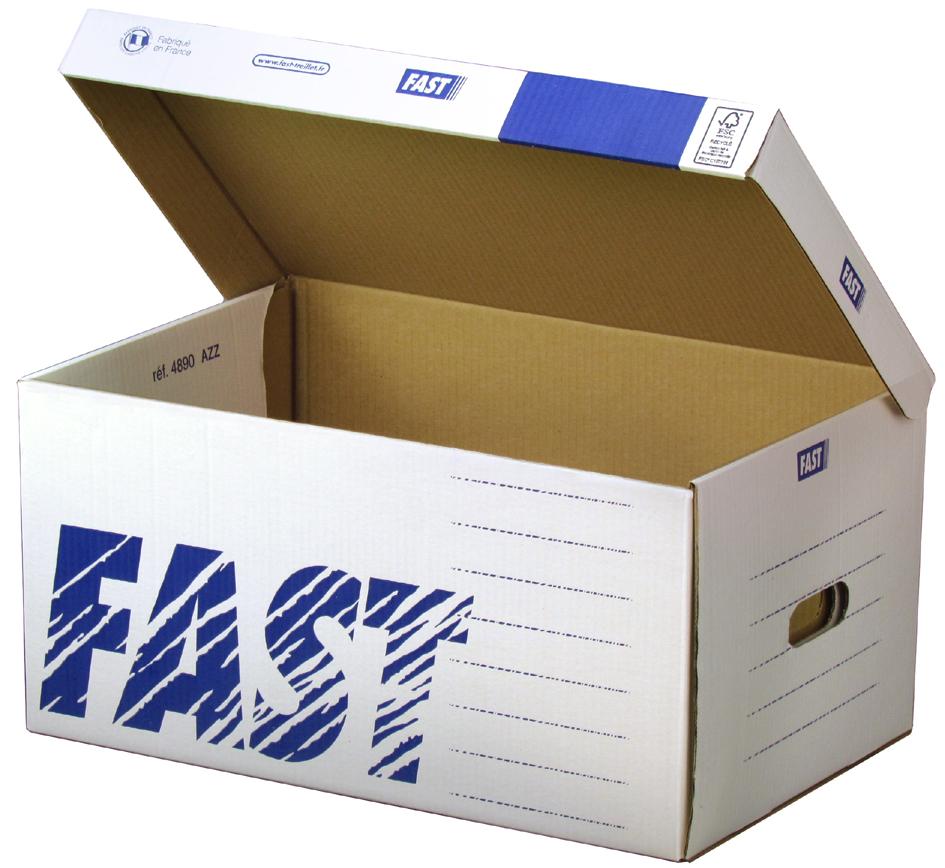 FAST Archiv-Klappdeckelbox Standard Container, ...