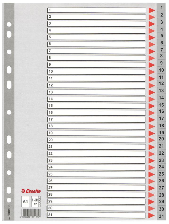 Esselte Kunststoff-Register, Zahlen, A4, 1-31, ...
