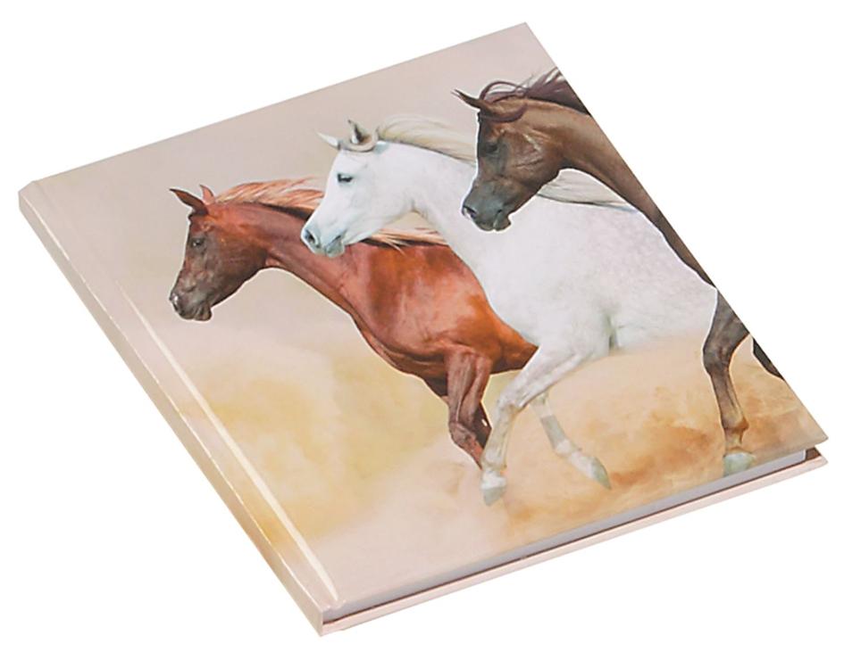 PAGNA Poesie-Album ´Wildpferde´, 80 g/qm, 64 Blatt