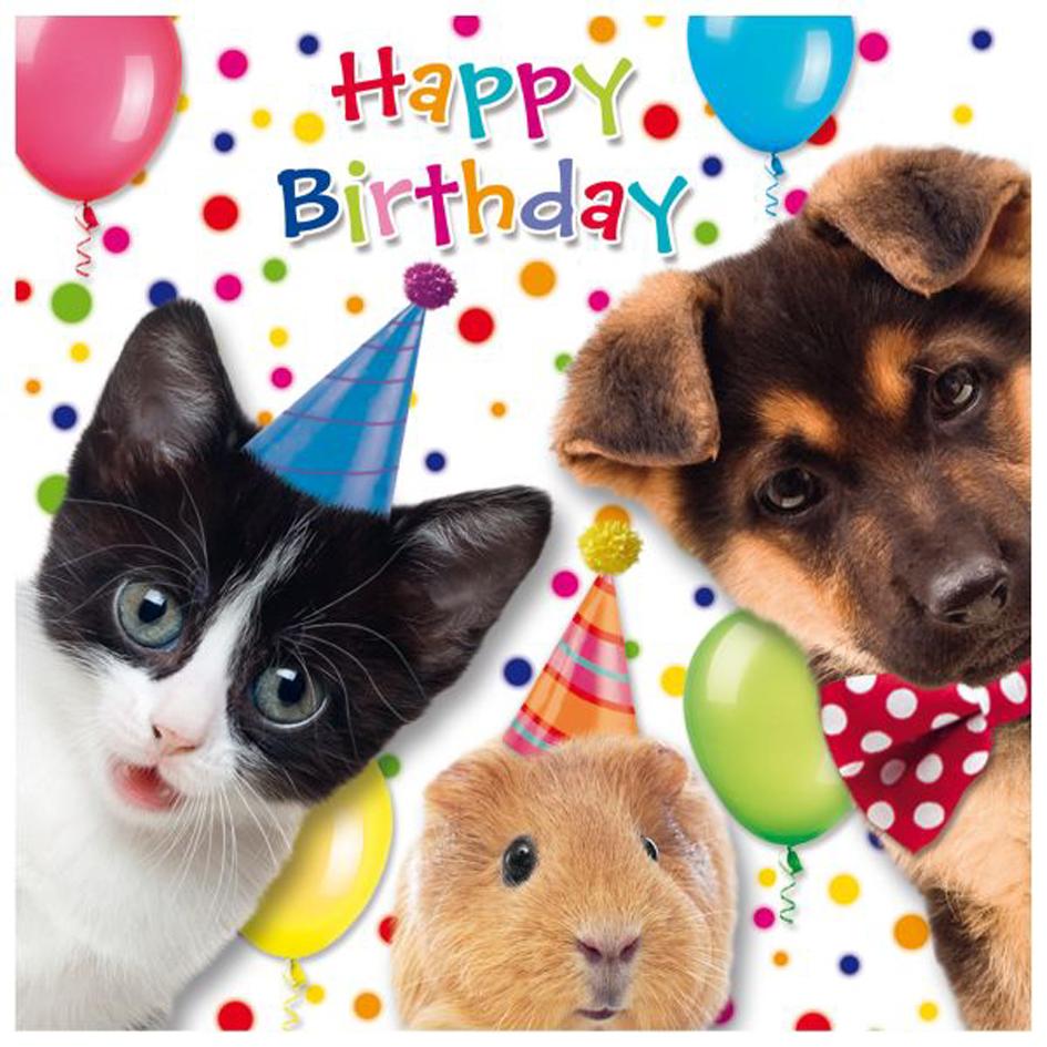 SUSY CARD 3D Geburtstagskarte ´Funny Animals Hu...