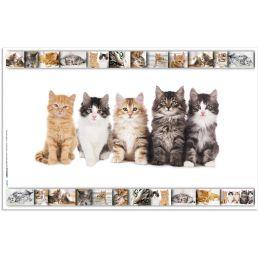HERMA Schreibunterlage Katzen, (B)550 x (H)350 mm