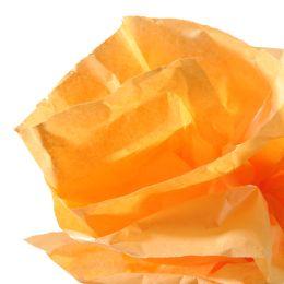 CANSON Seidenpapier-Rolle, 0,5 x 5,0 m, 20 g/qm, orange