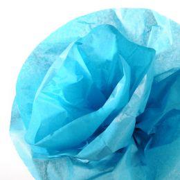 CANSON Seidenpapier-Rolle, 0,5 x 5,0 m, 20 g/qm, türkis