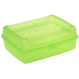 keeeper Brotdose luca, Click-Box Midi, grün-transparent