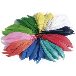 folia Indianerfedern, 100 g, farbig sortiert