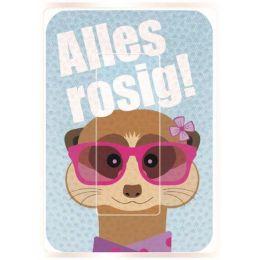 WEDO Brillen-Putztuch PocketCleaner Alles rosig!