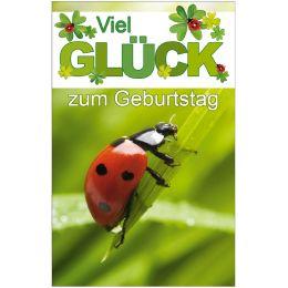SUSY CARD Geburtstagskarte Marienkäfer auf Grashalm