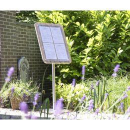 Securit Schaukasten GLASS STAR, 1 x DIN A4 Seite, walnuss