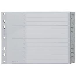LEITZ Kunststoff-Register, Monate, A4 Überbreite, Dez.-Jan.