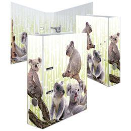 HERMA Motivordner Exotische Tiere, DIN A4, Koalafamilie