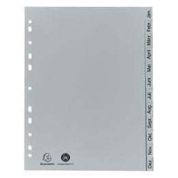 EXACOMPTA Kunststoff-Register, Monate, DIN A4, 12-teilig