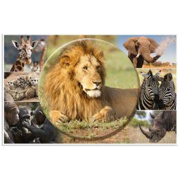HERMA Schreibunterlage Afrika Tiere, (B)550 x (H)350 mm