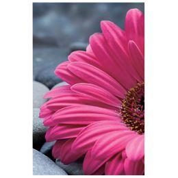 SUSY CARD Geburtstagskarte Margerite pink