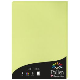 Pollen by Clairefontaine Papier DIN A4, knospengrün