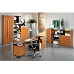 Wellemöbel Büromöbel-Kombination 4 TOOL, Office grau