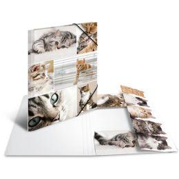 HERMA Eckspannermappe Katzen, aus Karton, DIN A4