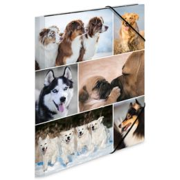 HERMA Eckspannermappe Hunde, aus Karton, DIN A4