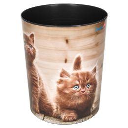 Läufer Papierkorb Neugiergie Kätzchen