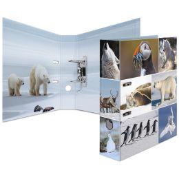HERMA Motivordner Animals, DIN A4, Eiswelten