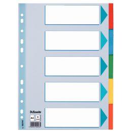 Esselte Karton-Register, blanko, A4, 5-teilig, mehrfarbig