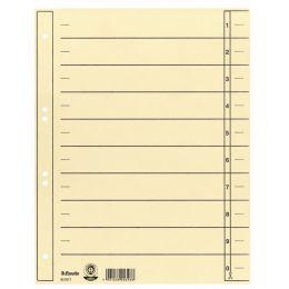 Esselte Karton-Trennblätter, DIN A4 Überbreite, chamois