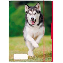 herlitz Zeichnungsmappe Hund, DIN A4