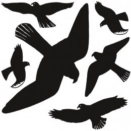 HERMA Etiketten Warnvögel, Folie, wetterfest, schwarz