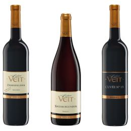 Veit Weinprobe Rotweine - Dornfelder, Spätburgunder, Cuvée